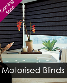 The all new Vulcan M1 Hawk Eye Motorised Blinds System